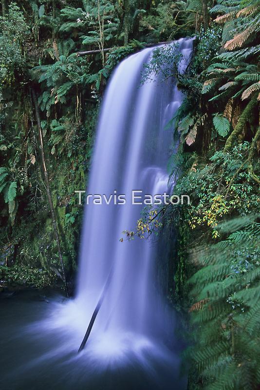 Beauchamp Falls by Travis Easton