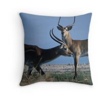 Letschwes in the Okawango Delta Throw Pillow