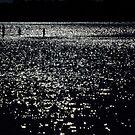 Star Walk by KellieBee