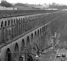 Montpellier Aqueduct by Ellen Bicknell
