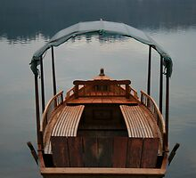 Lake Bled Boat by Andy Cook