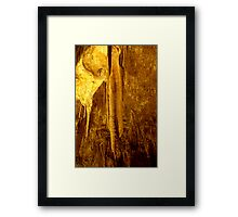 Formations at Tantanoola Framed Print
