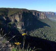 Pulpit Rock in the Lord's Blue Mountains by STEPHEN GEORGIOU