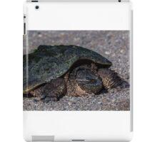 Slow but steady iPad Case/Skin