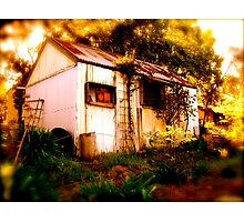 The Backyard Shed Photographic Print