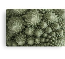 Vegetarian Fractals Canvas Print
