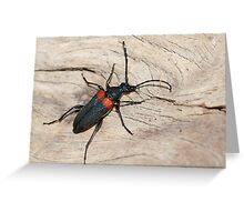 Mean Bug Greeting Card