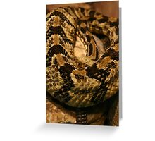 Rattlesnake Greeting Card