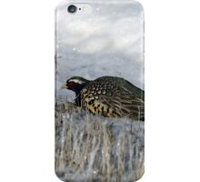 Rooster Pheasant in the snow iPhone Case/Skin