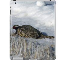 Rooster Pheasant in the snow iPad Case/Skin