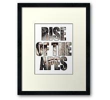 Rise Of The Apes Framed Print