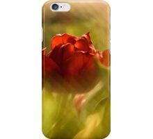 Tulip in the Spotlight iPhone Case/Skin