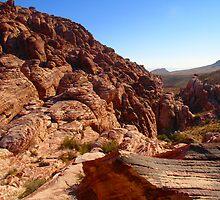 Red Rock by Cathy Jones