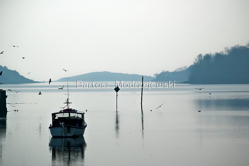 Donegal Lake by Bartosz  Modrzejewski