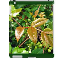 Glorious Greens - Sunlit Shrubbery in Mirrored Frame iPad Case/Skin