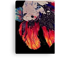 Siamese fighting fish (complete version) Canvas Print
