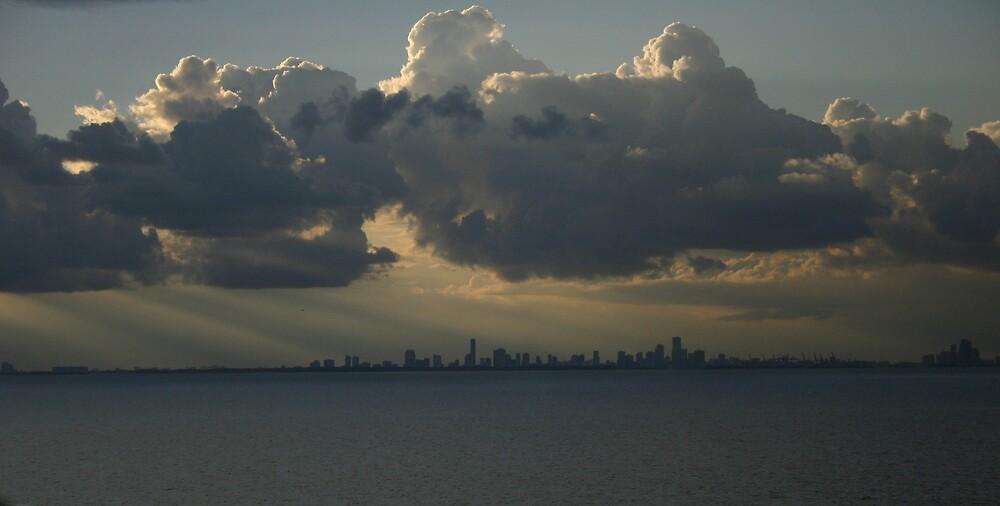 Miami Beach by Adria Bryant