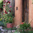Canyon Road, Santa Fe by saunders24