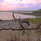 New Smyrna Inlet by saunders24