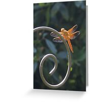 Dragon Fly - Interesting Info. in my details & why we shouldn't use pesticides Greeting Card