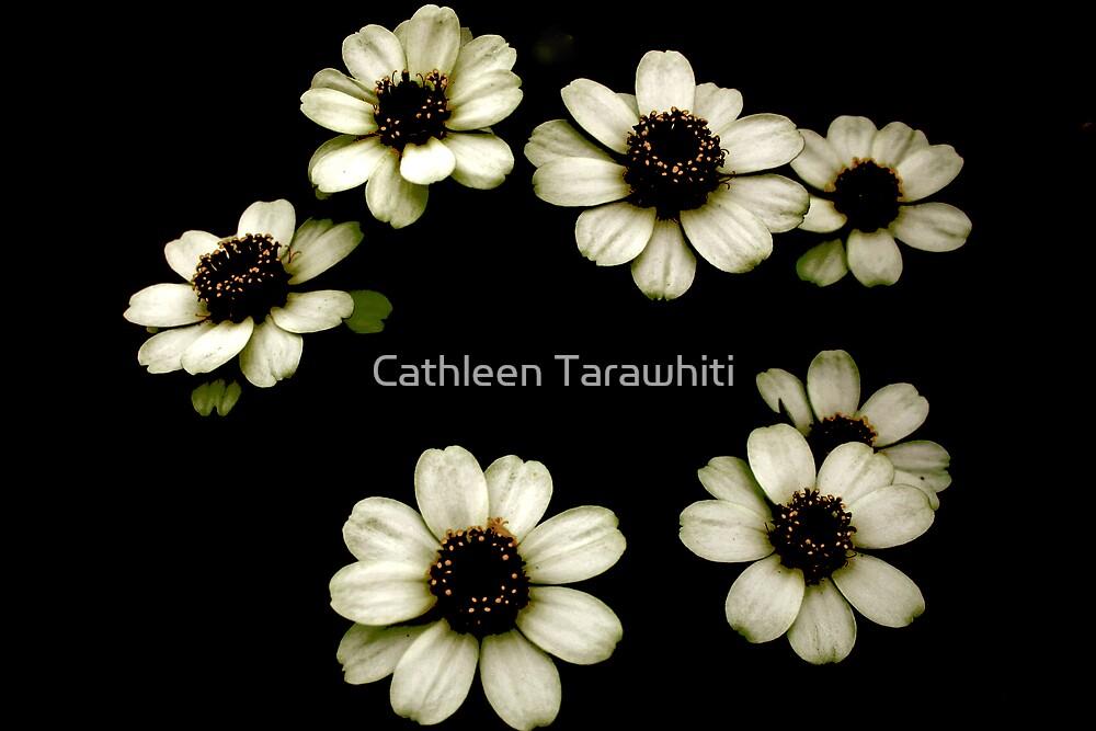 Seven by Cathleen Tarawhiti