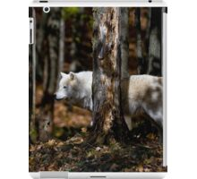 Arctic Wolf in Forest iPad Case/Skin