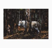 Arctic Wolf in Forest T-Shirt