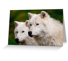 Arctic Wolf Pair Greeting Card