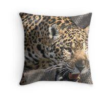 Jag Throw Pillow