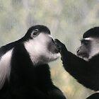 monkeys by trysten