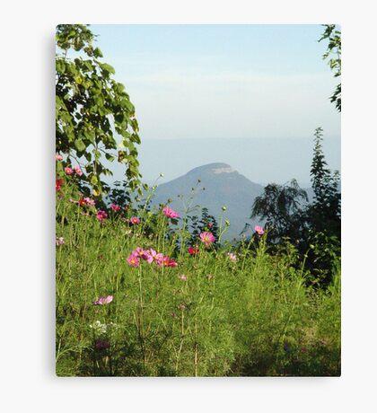 Springtime Mountain Air Canvas Print