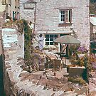 Somewhere in Cornwall or Devon by georgieboy98