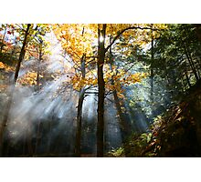 augural autumn aura Photographic Print