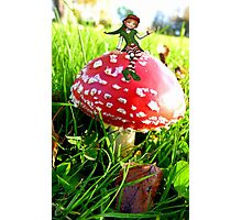 Make A Wish It Can Come True! - Mushroom & Elf Photographic Print