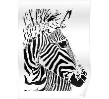 Zebra Profile Head Taken From Original Papercut - Doris Poster
