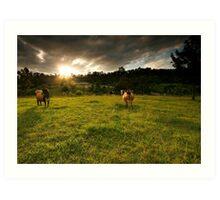 Farm Sunset Art Print