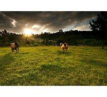 Farm Sunset Photographic Print
