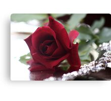 Everyone loves red roses Canvas Print