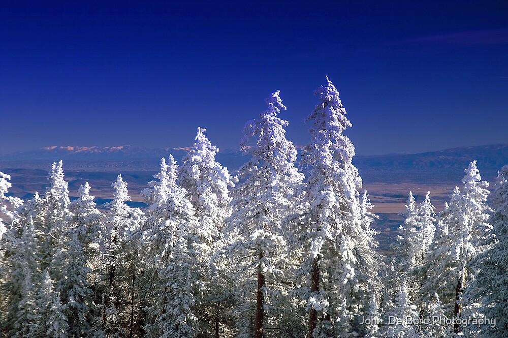 The Enchanting Snowfall by John  De Bord Photography
