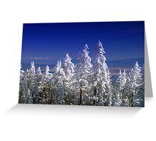 The Enchanting Snowfall Greeting Card