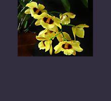 Dendrobium Gatton 'Sunray' FCC-AOS Unisex T-Shirt