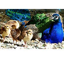 Happy Fathers Day Dad.. - Peacock & Chicks - NZ Photographic Print