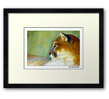 Signature series ~ Gyptian Framed Print