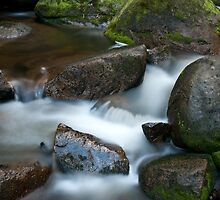 Torongo River 2 by DavidsArt