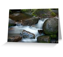 Torongo River 2 Greeting Card