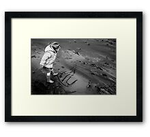 lily beach Framed Print