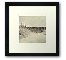 Walking Luna Framed Print