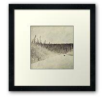 Walking Luna Framed Print