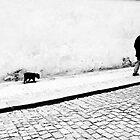 Old dog...No tricks by John Armstrong-Millar