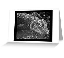 reptile 01 Greeting Card